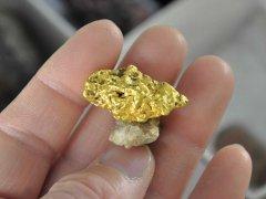 Min_14-Gold-Fabre-BR-M17-07.jpg